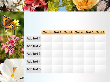 Variety of Flowers PowerPoint Template Slide 15