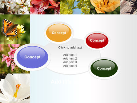 Variety of Flowers PowerPoint Template Slide 16