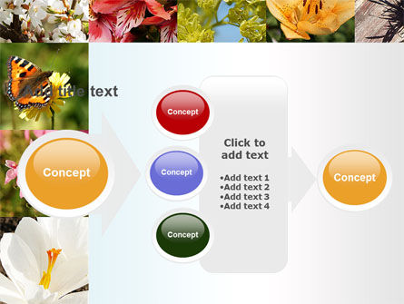 Variety of Flowers PowerPoint Template Slide 17