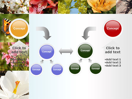 Variety of Flowers PowerPoint Template Slide 19