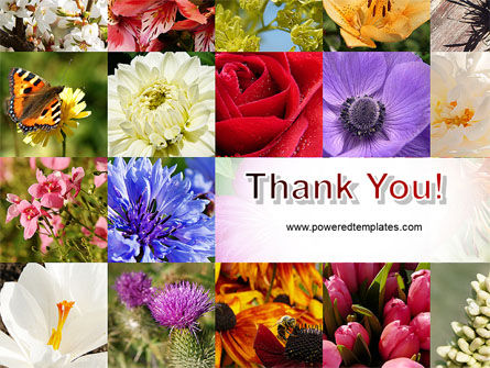 Variety of Flowers PowerPoint Template Slide 20