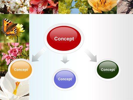 Variety of Flowers PowerPoint Template Slide 4