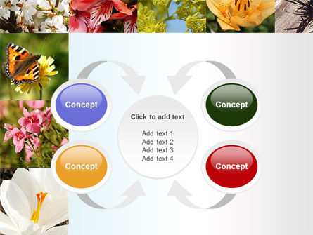 Variety of Flowers PowerPoint Template Slide 6
