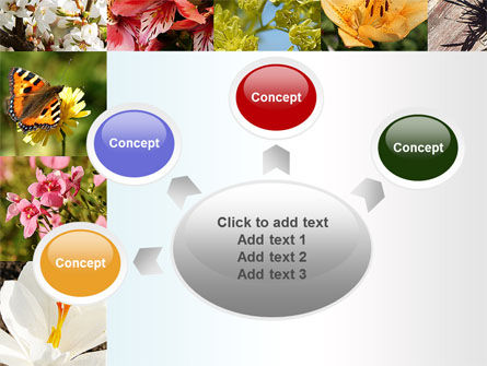 Variety of Flowers PowerPoint Template Slide 7