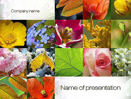 Flowers Collage PowerPoint Template, 10706, Nature & Environment — PoweredTemplate.com
