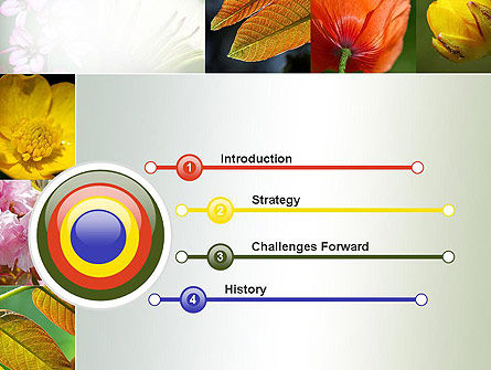 Flowers Collage PowerPoint Template, Slide 3, 10706, Nature & Environment — PoweredTemplate.com