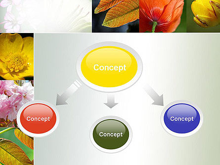 Flowers Collage PowerPoint Template, Slide 4, 10706, Nature & Environment — PoweredTemplate.com