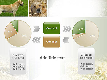 Labrador PowerPoint Template Slide 16