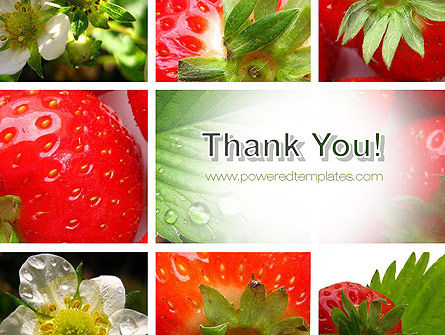 Strawberries Collage PowerPoint Template Slide 20