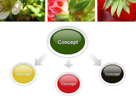 Strawberries Collage PowerPoint Template Slide 4