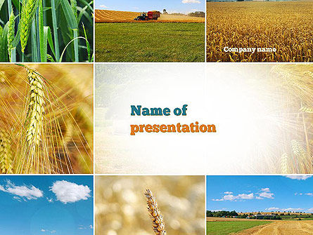 Wheat Cultivation PowerPoint Template