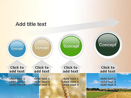 Wheat Cultivation PowerPoint Template Slide 13