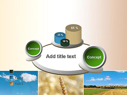 Wheat Cultivation PowerPoint Template Slide 16