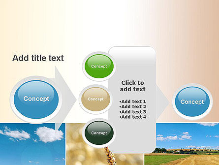 Wheat Cultivation PowerPoint Template Slide 17