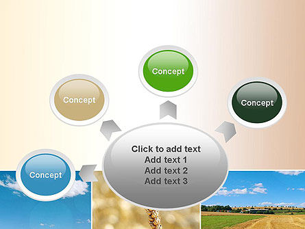 Wheat Cultivation PowerPoint Template Slide 7
