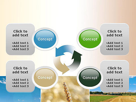 Wheat Cultivation PowerPoint Template Slide 9