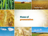 Agriculture: Wheat Cultivation PowerPoint Template #10884