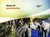 Nature & Environment: Afrikaanse Fauna PowerPoint Template #10894