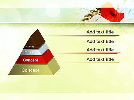 Poppy in Wheat PowerPoint Template Slide 12