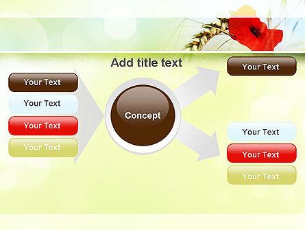 Poppy in Wheat PowerPoint Template Slide 14