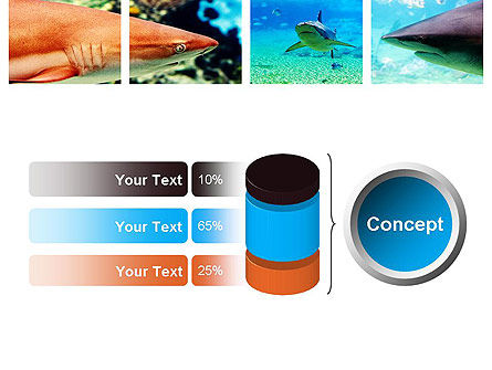 Sharks PowerPoint Template Slide 11