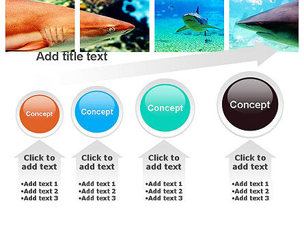 Sharks PowerPoint Template Slide 13