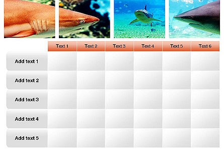 Sharks PowerPoint Template Slide 15