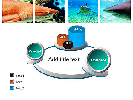 Sharks PowerPoint Template Slide 16