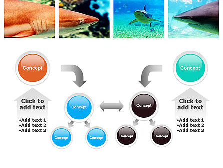 Sharks PowerPoint Template Slide 19