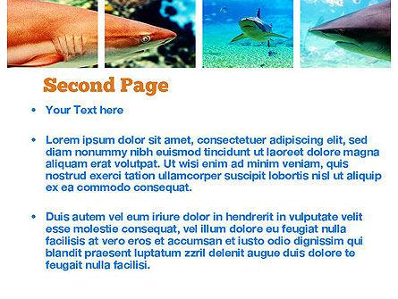Sharks PowerPoint Template, Slide 2, 10964, Nature & Environment — PoweredTemplate.com