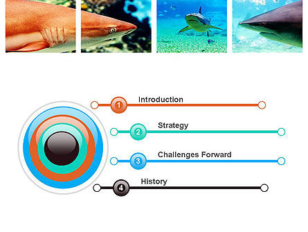 Sharks PowerPoint Template Slide 3