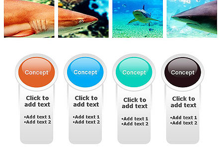 Sharks PowerPoint Template Slide 5