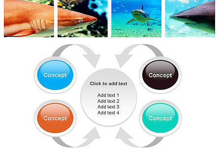 Sharks PowerPoint Template Slide 6