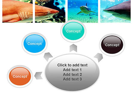 Sharks PowerPoint Template Slide 7