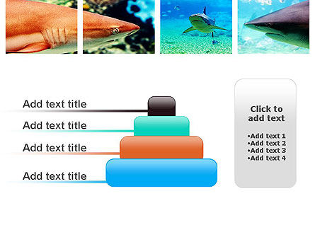 Sharks PowerPoint Template Slide 8