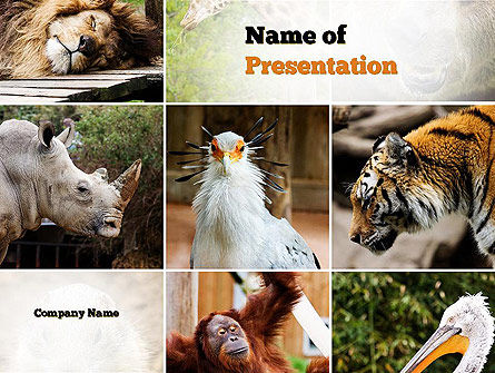 Wild Animals PowerPoint Template, 11024, Nature & Environment — PoweredTemplate.com
