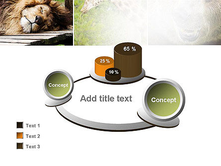 Wild Animals PowerPoint Template Slide 16