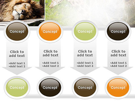 Wild Animals PowerPoint Template Slide 18