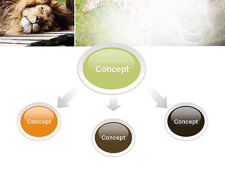 Wild Animals PowerPoint Template Slide 4