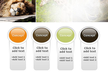 Wild Animals PowerPoint Template Slide 5