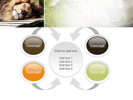Wild Animals PowerPoint Template Slide 6