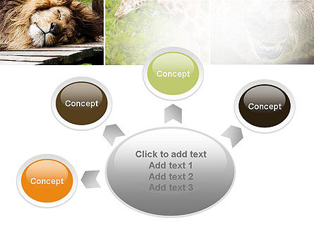 Wild Animals PowerPoint Template Slide 7