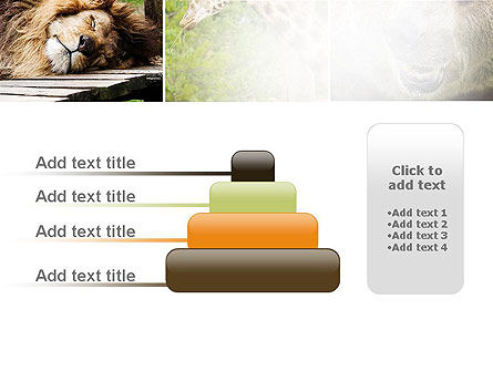 Wild Animals PowerPoint Template Slide 8