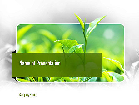 Nature & Environment: Green Presentation PowerPoint Template #11044