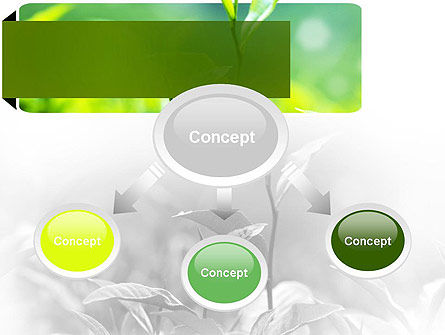 Green Presentation PowerPoint Template, Slide 4, 11044, Nature & Environment — PoweredTemplate.com