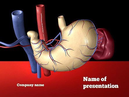 Medical: Digestive System PowerPoint Template #11078
