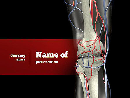 Knee PowerPoint Template, 11160, Medical — PoweredTemplate.com