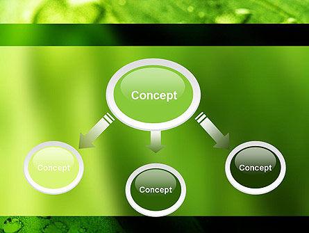 Green Organization PowerPoint Template, Slide 4, 11248, Nature & Environment — PoweredTemplate.com