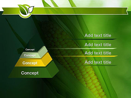 Corn On The Cob PowerPoint Template Slide 12