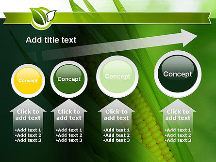 Corn On The Cob PowerPoint Template Slide 13